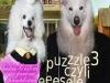 PUZZLE 3 (2007)